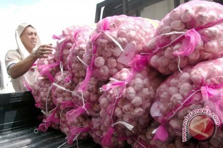 Sulteng Dapat Pasokan 20 Ton Bawang Putih