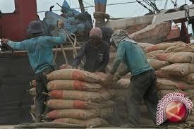 Upaya pemerintah Sulteng atasi krisis semen