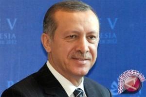 Erdogan telanjangi