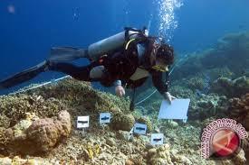 Donggala Kembangkan Wisata Laut Dan Danau