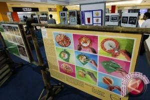 Blogger Indonesia Berkolaborasi Menu Makanan Dengan Pancious