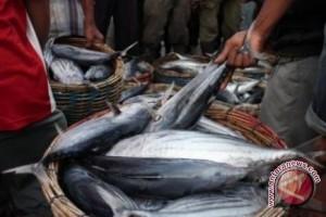 Harga ikan di Kota Palu mahal