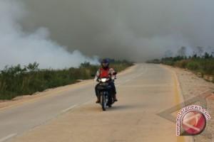 Udara di Riau Mulai Sehat