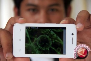 Dinkes: Belum Ada Warga Palu Terserang Virus Mers