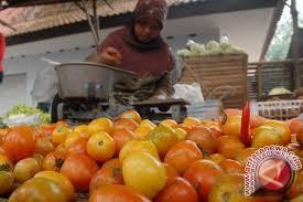 Harga Buah Tomat Di Sentra Produksi Anjlok