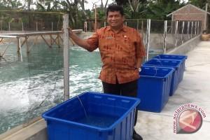 DKP Sulteng Tingkatkan 'bargaining' Usaha Budidaya
