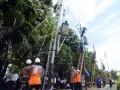 Alhamdulillah, Listrik Palu Surplus Daya 10 MW