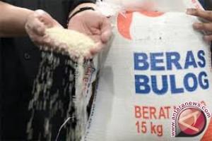 Bulog Sulteng tetap proaktif beli beras petani