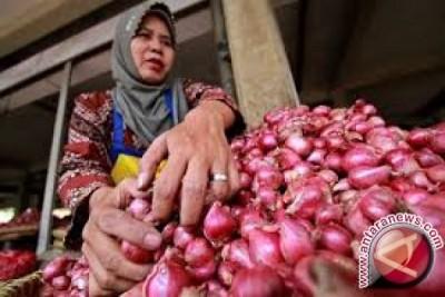 Harga Bawang Merah Di Palu Rp45.000/kg