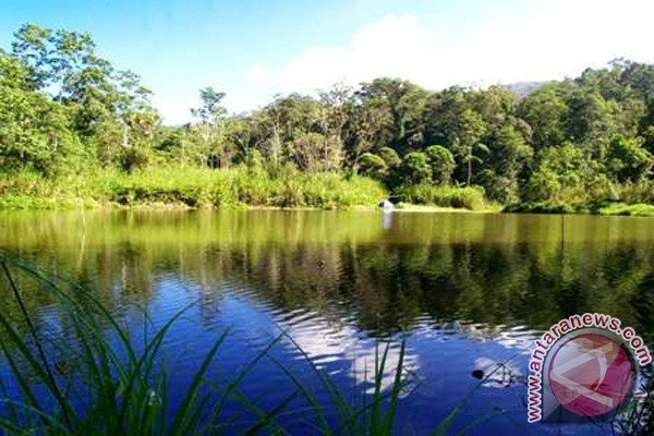 Taman Nasional Lore Lindu Benahi Danau Tambing