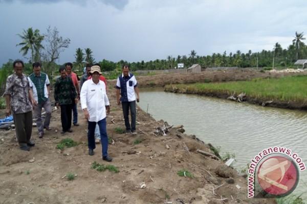DKP Sulteng bangun percontohan mina padi di lima kabupaten