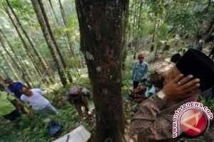 Dana Bagi Hasil Kehutanan Sulteng Rp5,1 Miliar