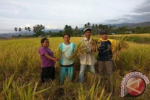 Legislator: Pemkab Tingkatkan Pertanian Tanpa Bahan Kimia