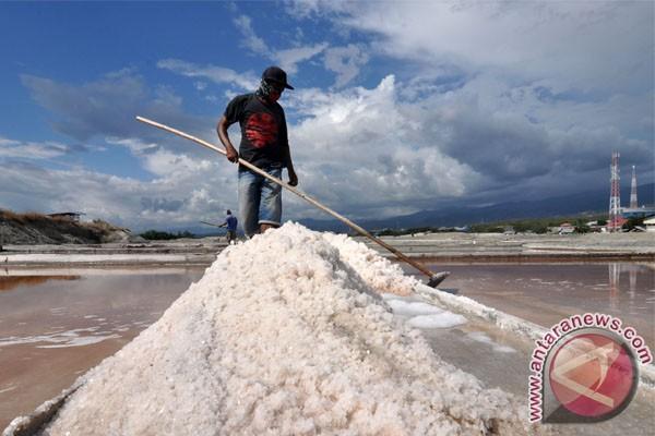 Kiara mencatat Indonesia impor garam sejak 1990
