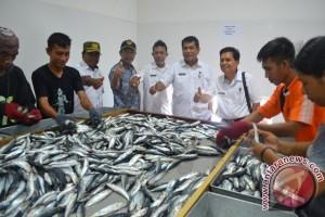 Nelayan Banggai Diingatkan Ukur Ulang Tonase Kapal