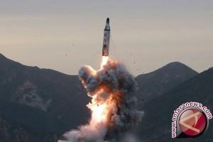 Iran: peluru kendali darat ke lautnya dapat menjelajah 700 kilometer