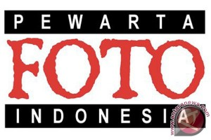 Pewarta Foto Indonesia Palu Buka Pendaftaran Anggota
