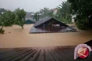 Banjir Di Tolitoli Diduga Karena Hutan Mulai Rusak