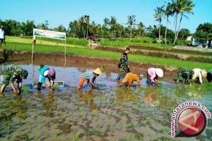 Danrem : pertanian pintu masuk atasi kemiskinan