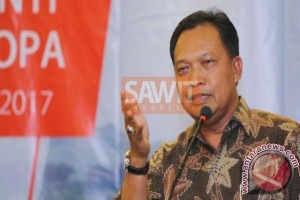 Produktivitas kebun sawit Indonesia rendah dan 'high cost'