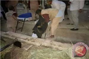 Satu Calon Haji Sulteng Meninggal Dunia