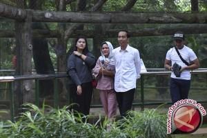 Putri Presiden Jokowi akan menikah 8 November