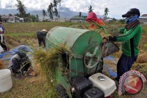 Pemprov Sulteng optimistis  tingkatkan produksi padi