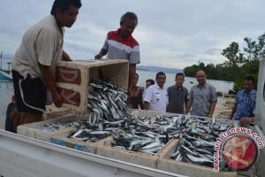 Nelayan Banggai Laut buang ikan puluhan ton tiap bulan