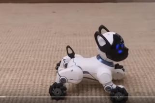 Kembali hadir Robot anjing Aibo