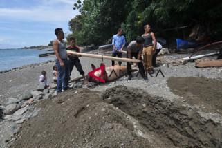 Duyung mati terdampar di Palu
