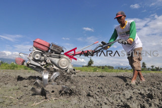 Petani di Donggala sulit bertani pascabencana