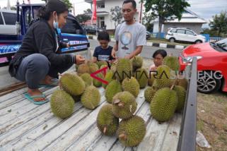 Palu kembali dibanjiri buah durian dan naga