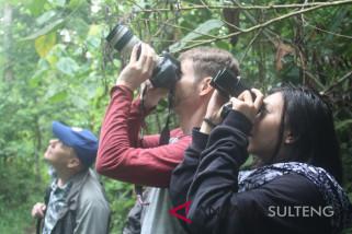 Peneliti minta TNLL bangun jalur pengamatan burung