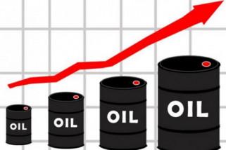 Harga minyak terus menguat ketika jumlah rig as turun