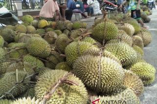 Kota Parigi dibanjiri buah durian