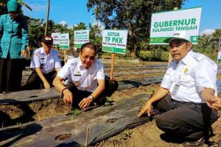 Gubernur Sulteng minta gerakan menanam cabai diintesifkan
