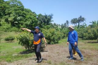 Nasdem bangun kebun hortikultura untuk petani Donggala