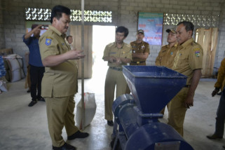 Palu - Morowali Utara kerja sama peningkatan produksi pakan unggas