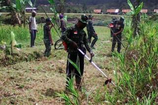 Pemkot Palu-TNI buka 100 hektare lahan pertanian
