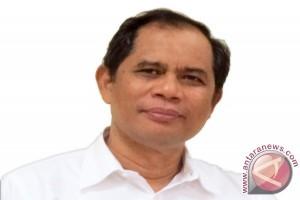 Investigasi Reporting: Kucing Kawin
