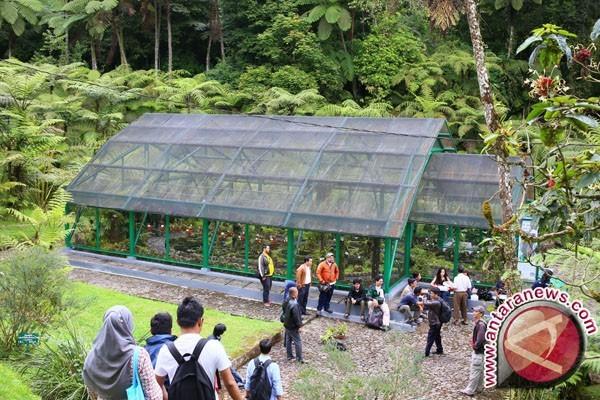 Kendari Percepat Pembangunan Kebun Raya Nangananga