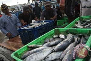 Konawe Selatan buka peluang investasi sektor perikanan
