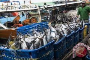 Produksi Perikanan Tangkap Sultra Capai 151.680 Ton