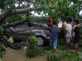 Warga bersama personil Basarnas Kendari mengangkat pohon yang menimpa satu unit mobil pasca angin kencang,  Kendari, Sulawesi Tenggara, Rabu (1/3). Akibat hujan disertai angin kencang menyebabkan puluhan pohon ambrok dan ratusan rumah di 17 kelurahan terendam banjir, sementara BMKG Maritim Kendari memprakirakan cuaca buruk disertai badai akan terjadi selama sepekan dengan kecepatan angin 15 knot.  ANTARA FOTO/Jojon/17.