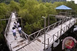 Kendari Diimbau Libatkan Investor Kelola `Tracking Mangrove`