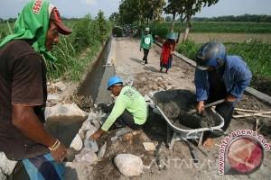 Petani Buton Tengah Membutuhkan Jalan Usaha Tani