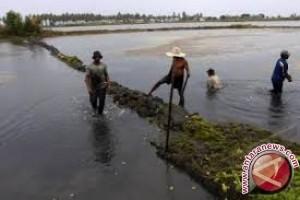 KKP Bantu Nelayan Tambak Kolaka Alat Berat
