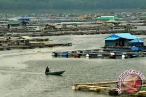 Kendari Tetapkan Dua Kecamatan Sentra Budidaya Karamba