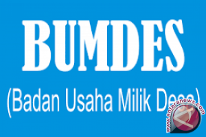 200 desa di Konawe Selatan miliki Bumdes
