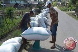 Bulog Serap Beras Petani Sultra 3.857 Ton